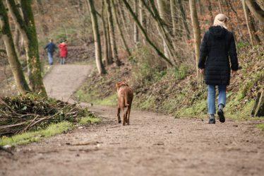 . Choďte několikrát za týden na delší procházku svižným tempem. Tuky se spalují i při chůzi.