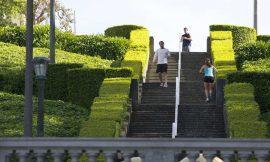 Jak zhubnout: Chůze nebo běh? Co funguje lépe?