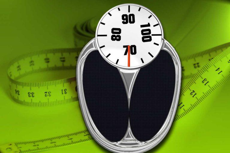 Kalkulačka BMR – bazální metabolismus
