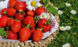 Dieta a jahody: Kolik kalorií obsahují jahody?