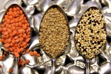 Suchá čočka má ve 100 gramech, asi 348 kalorií (kcal), což je 1418 kJ). Pokud ale čočku uvaříte, tak se zvětší její objem a hmotnost (nasákne vodu).