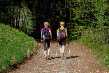 Nordic walking je severská chůze s holemi. Díky používání speciálních hůlek, je při chůzi více zapojena i horní část těla.