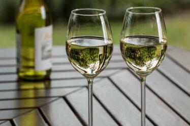 O prospěšnosti pití vína se vedou dlouhé diskuse. Mnoho odborníku považuje pití vína v malém množství za zdraví prospěšné.