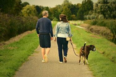 Kalorie, které spálíme za jeden kilometr chůze, se budou odvíjet především od toho, jakou rychlostí budeme chodit a jaká bude naše aktuální váha.